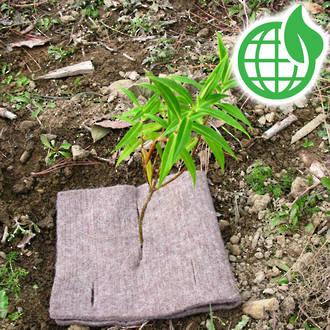 CombiGuard EcoWool Mulch Mats 500gsm 400x200mm 100 Pack