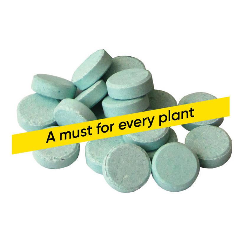 Slow Release Fertiliser Tablets