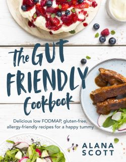 Gut Friendly Bookbook cover resized