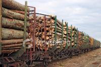 ist2 1986206-lumber-goods-276