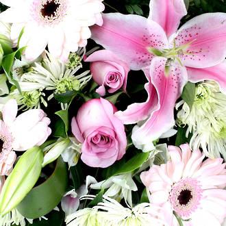 Florist Choice Vox Box