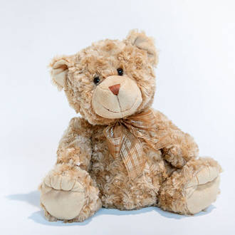 Georgie Bear Brown