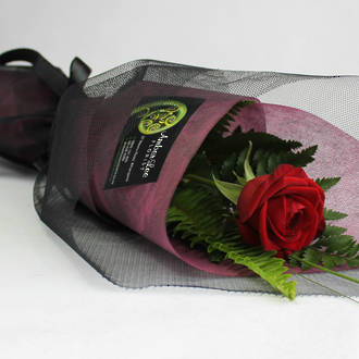 Luxury Red Rose