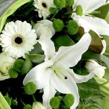 Green Bouquet - Kakariki