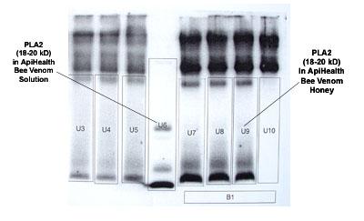 HPL2-immune