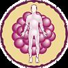 Rheumatoid Factor antigen