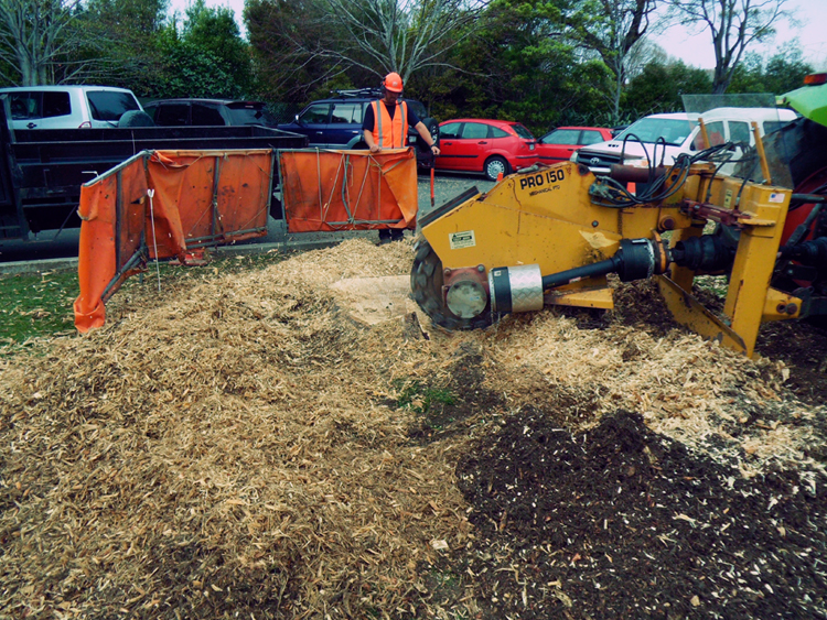 stump grinding asplund nz