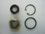 SEAL KIT DKS-26 CARBON (CP6450)