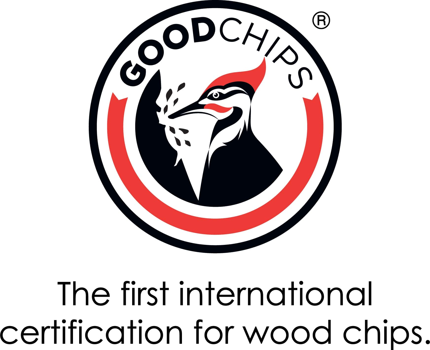 GoodChipsLogo with tagline