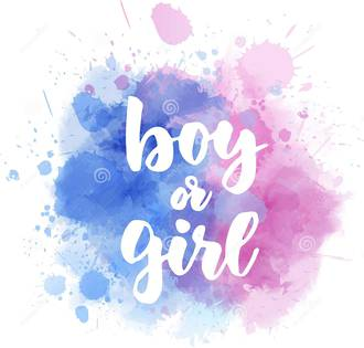 Gender Maker - Boy or a Girl Gender Prediction Test