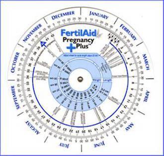 Ovulation & Pregnancy Wheel