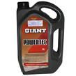 GIANT OIL POWERTEC 5W30 CI4/SN 5L