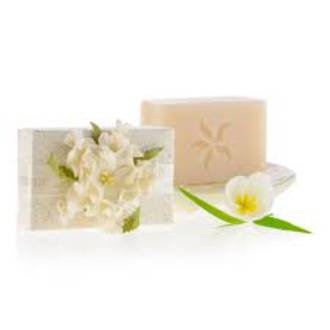 Pure Fiji | Luxury Soap - Coconut Lime