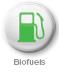 MEGA 7 biofuels