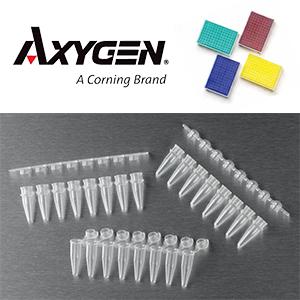 AXYG Corn PCR-Tubes