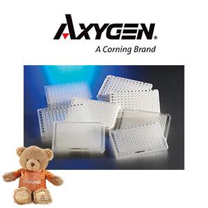 AXYG PCR Plates 300x300