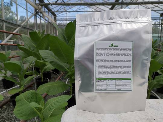 Superzyme mini - Soil Inoculant