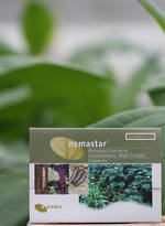 nemastar® for Flea, Beetle and Cutworm Control