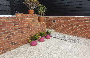 Brick Wall Cleaned with Bio-Shield