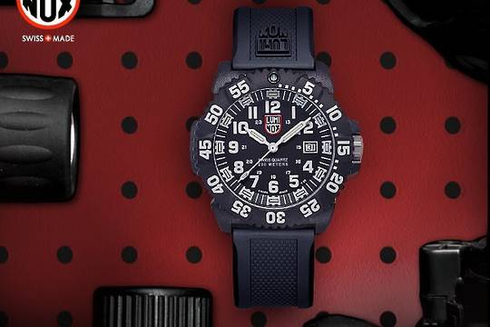 Luminox Navy SEAL COLORMARK 3051 WATCH