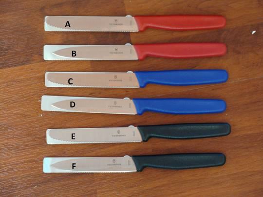 Victorinox Paring Knife 10cm/11cm - 6 Choices