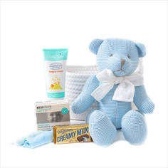 Bear Hugz Baby Gift Basket