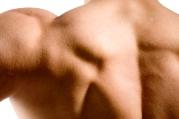 Phil's back muscles.jpg