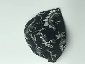 Dinosaurs with Plain Black on Reverse Side - Reversible Limited Edition Face Mask
