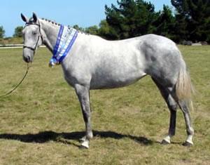 silversongrsc02