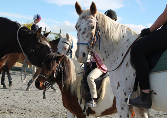 riding-lesson