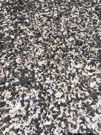 Pebble & Shell Mix