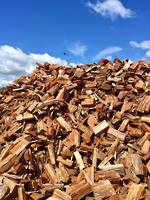 Gum Firewood