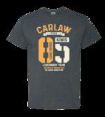 Carlaw Park Marvellous Kiwis 85 | Grey Heather