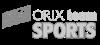 Orixt Logo-142