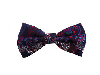 Large blue paisley Pre-tied Bow
