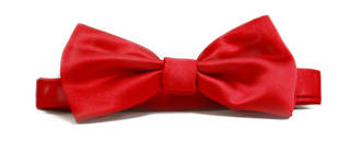 Red Italian Satin Pre-tied bow