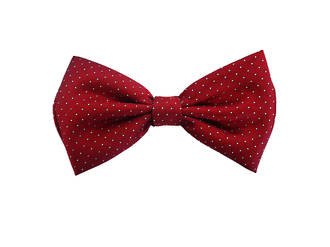 Rich red and pale blue spot Pre-tied Bow