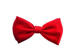 Red with navy spot Pre-tied Bow