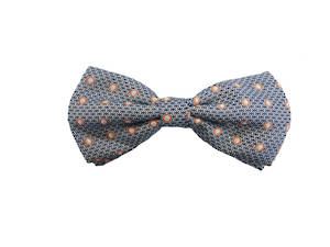 Blue and peach pattern Pre-tied Bow
