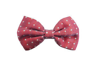 Red with white spot silk Pre-tied Bow
