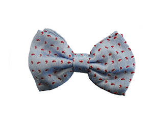 Light blue with red paisley silk Pre-tied Bow