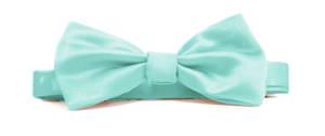 Aqua Italian Satin Pre-tied bow