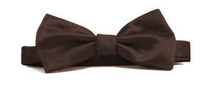 Brown Italian Satin Pre-tied bow