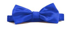 Cobalt Italian Satin Pre-tied bow
