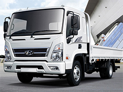 Hyundai-Trucks for sale