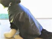 Faux Leather Dog Coat