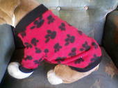 Dog Sweatshirt Fleece Red with Black Paws