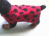 Red Paw Dog Coat