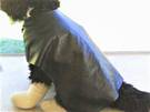 Faux Leather Dog Coat