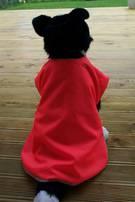 Dog Coat Hi Viz